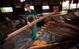 Houtfabriek, Amazone